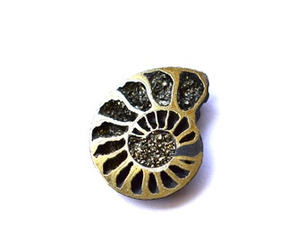 24 x 19 x 3 mm  Pyritized Ammonite fossil cabochon