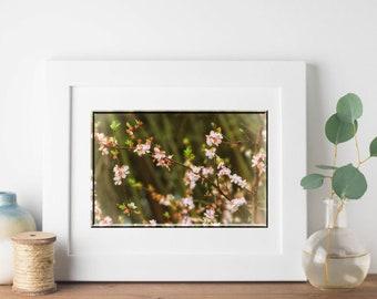 Floral Wall Art-24x36 Print-Green Wall Decor-Flower Photography-Nature Wall Art-Guest Room/Nursery/Bathroom Decor-Flower Blossom-SCPerkins