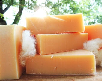 SUNSILK - Solid Shampoo Bar - Citrus Silk Shampoo Bar Soap - Lemongrass, Blood Orange & Real Silk