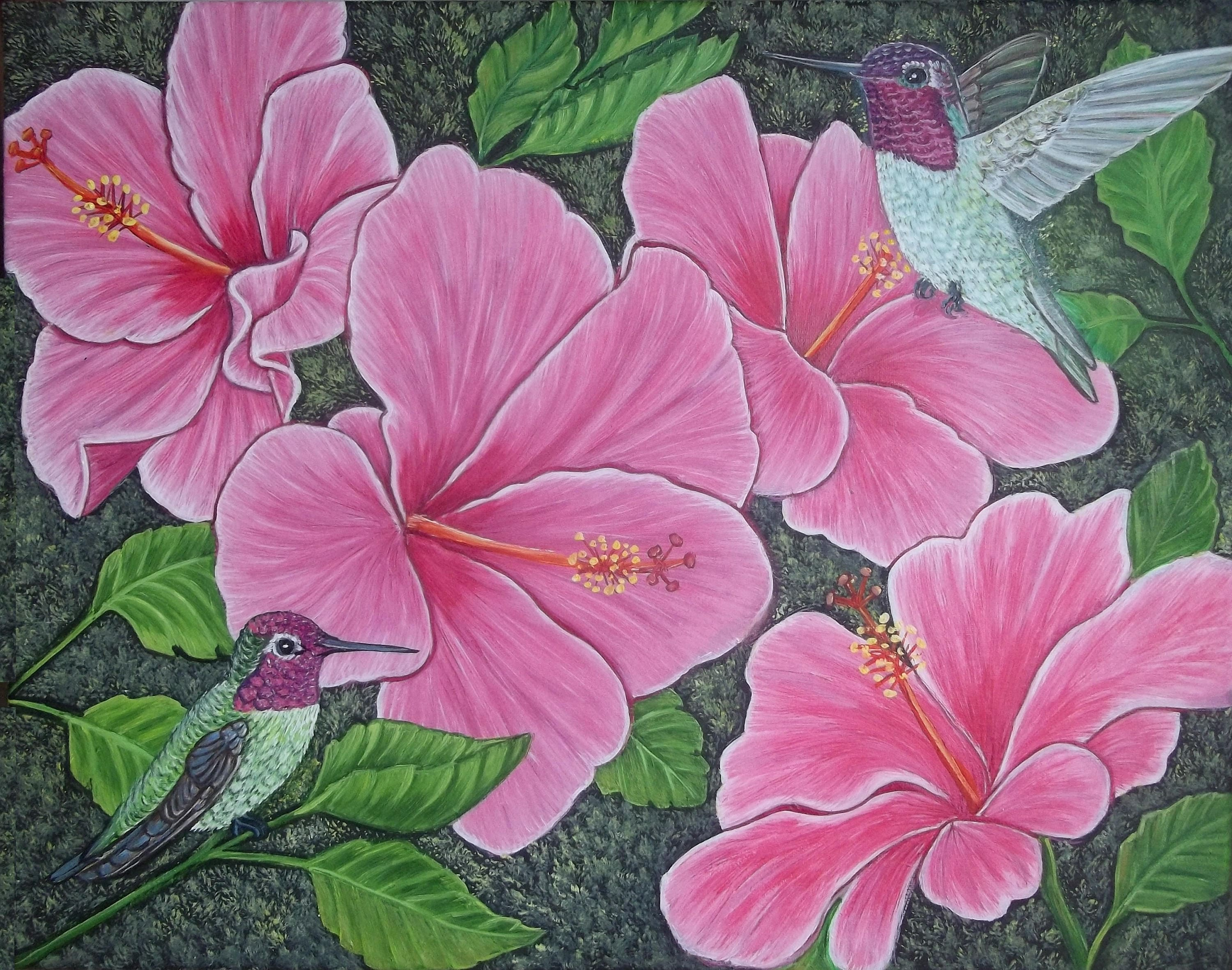 Two hummingbirds and pink hibiscus flowers zoom izmirmasajfo Gallery