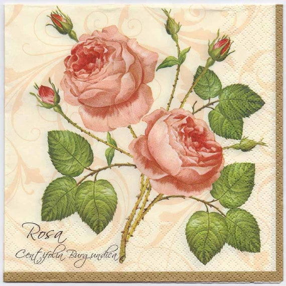 Decoupage Napkins Botanical Print of 2 Pink Roses Rose