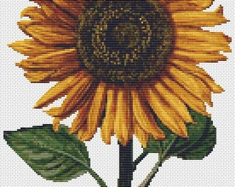 Floral Cross Stitch Chart, Sunflower Cross Stitch Pattern PDF, Art Cross Stitch, Daniel Froesch, Embroidery Chart