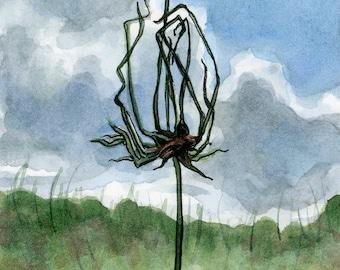 Wild Onion - 6x6 Original watercolor