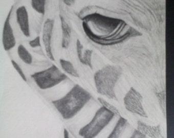 Georgio The Giraffe