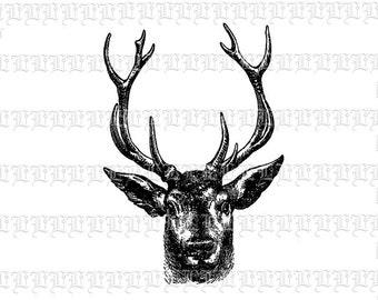 Deer Antlered Wild Animal Head Antique Vintage Clip Art Illustrations Digital Collage Sheet 1994