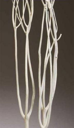 Mitsumata rami sbiancati bianco rami rami secchi rami - Rami secchi decorativi ...