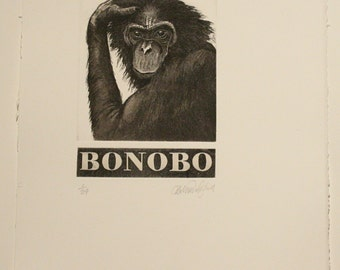 Bonobo - Etching and Aquatint with hand etched nameplate by D.R Wakefield