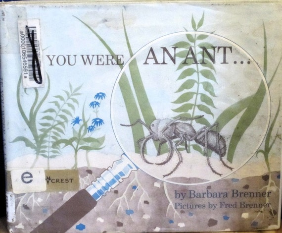 If You Were An Ant. . + Barbara Brenner + Fred Brenner + 1973 + Vintage Kids Book