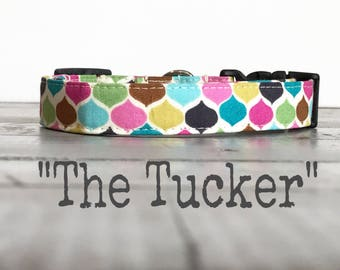 DOG COLLARS,  Dog Collar, The TuCKER, Classic Dog Collars, Jewel