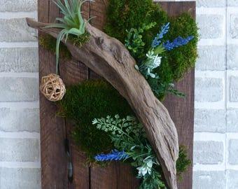 Green wall- wall decor- vertical garden- faux air plant evergreen arrangement with driftwood