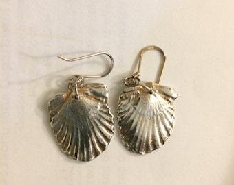 Silver Scallop Earrings