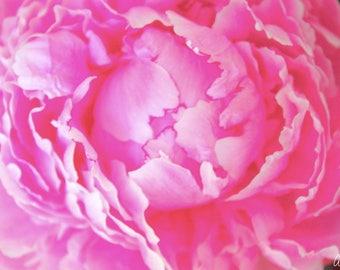 "Original Peony Photo Print ""Forceful Beauty"" - Home Decor"