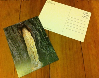 Redamancy - Post Card