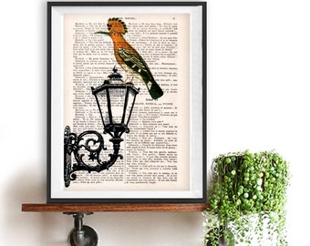 Street light Print, Bird Artwork, Bird print, colorfull Bird Print, Office Art, vintage street light, Vintage Bird Print, Street Light Bird