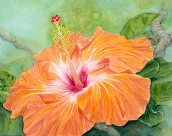 Orange Hibiscus Painting Art Print
