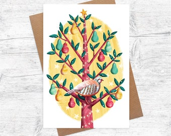 Partridge in a Pear Tree   Illustrated Christmas Card   Pack of 6 Greetings Cards   Illustration   Festive   A6