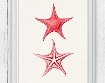 Starfish in hot pink  seaside print - Wall decor poster - sea life print SAS073