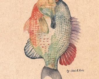 Korean / American - Everyday Fish