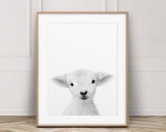 Lamb Print, Nursery Wall Art, Little Lamb Art, Farm Animal Prints, Baby Animals Art, Black & White, Nursery Decor, Kids Art, Printable Art