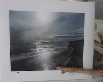 Magestic  8x10 Gallery Print