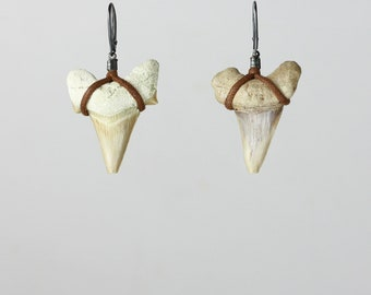 Shark tooth and burned silver earrings