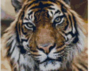 Cross stitch tiger pdf pattern