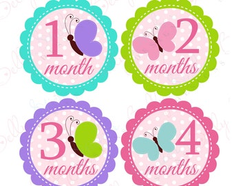 Girl Monthly Baby Stickers, 1 to 12 Months, Monthly Bodysuit Stickers, Baby Age Stickers, Butterfly