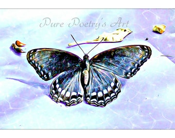 SALE Digital Download Red Spotted Purple Butterfly - Enhanced Art Photography - Digital Image Download