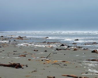 Driftwood, Pacific Ocean Photography, Northern California