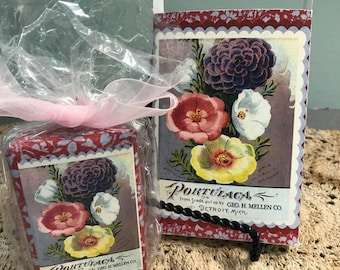 Portulaga Seed Soap Gift Set in Lavender