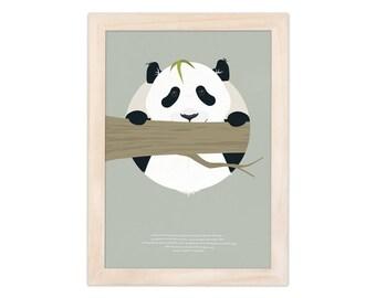 Art print - panda   children - nursery   A4 - 8.27 x 11.69 inches