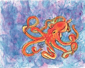Octopus watercolour Prints