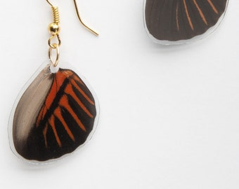 Wallace's Longwing Butterfly Earrings