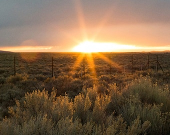 Landscape Photography - New Mexico Desert at Sunset
