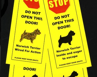 Norwich Terrier Wired For Action - the friendly alternative to Beware of Dog Signs that Keeps Dogs Safe
