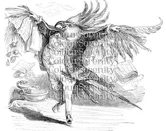 Vintage Bird Man Print - Instant Download printable