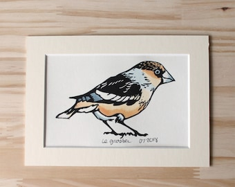 Hawfinch bird original linocut print, with off-white mat, original print, hand painted, signed and dated, unframed