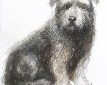 Original watercolor, dog art, watercolor pet, dog portrait, wall art, animal art, animal watercolor, girt for her, pet gift, art gift OOAK