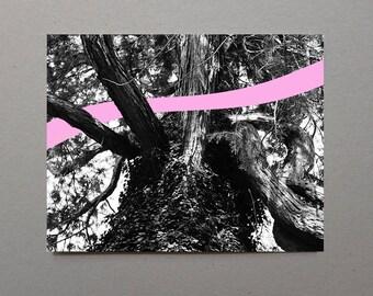 Tree Trunk Art Pink Wave Art Art Print,Black and White Photography, Photographer Gift Trunk, Monochromatic, Fine Art UK pastel pink girl art