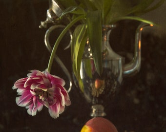Still Life - PhotoArt