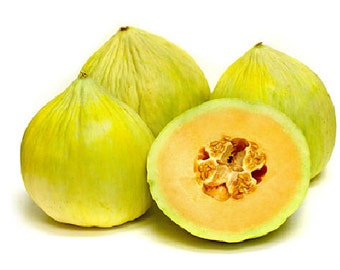 20 Seeds Crenshaw Cantaloupe Melon Can weigh up to 10 Pounds! Heirloom Sweet