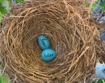 Personalized Wedding Gift Nest Blue Robin Eggs Customized Names Photo Anniversary Valentines Day pp181