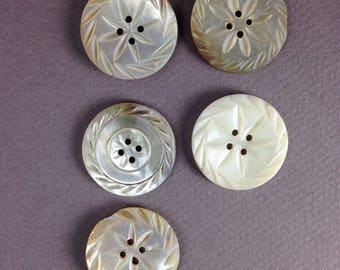 """5 Antique  carved shell buttons 1"""""""