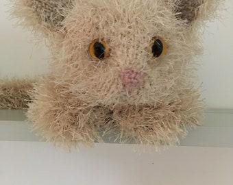 Fluffy McWhiskerson the kitten