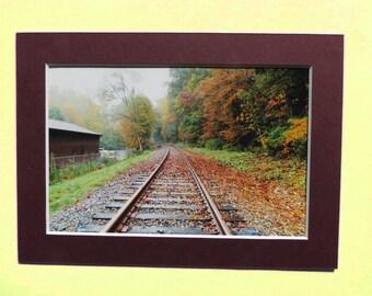Emmêlés automne 4 x 6 sur la piste Fine Art photographie impression, signé des oeuvres d'art, petit Wall Art Rustic Home Decor Train titres de feuilles Orange