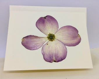 Pressed Flower Card Natural Pressed Pink Dogwood Blank Greeting Card Single Dried Single Floral Nature Art All Occasion Stationery Notes