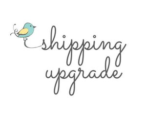 Domestic (US) Priority Mail upgrade
