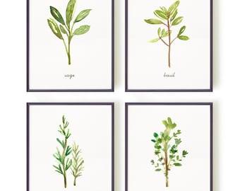 Herb Prints Watercolor Painting, Kitchen Wall Art Botanical Print Set of 4 Spring Decor, Botanical Chart Thyme Sign Basil Art Rosemary Print