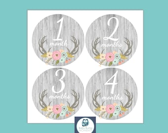 INSTANT DOWNLOAD Baby Month Stickers, Baby Shower Gift, Monthly Baby Stickers, Deer Antler Floral, Milestone Baby Stickers, Digital, PDF