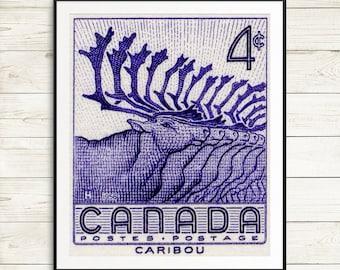 caribou herd wall art, canada caribou canada, canadian caribou art prints, caribou wall art, caribou herd art print set, animal art prints